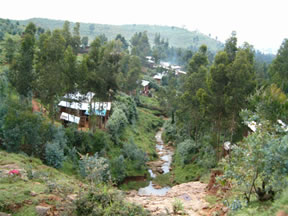 View of houses around Entoto, Addis Ababa
